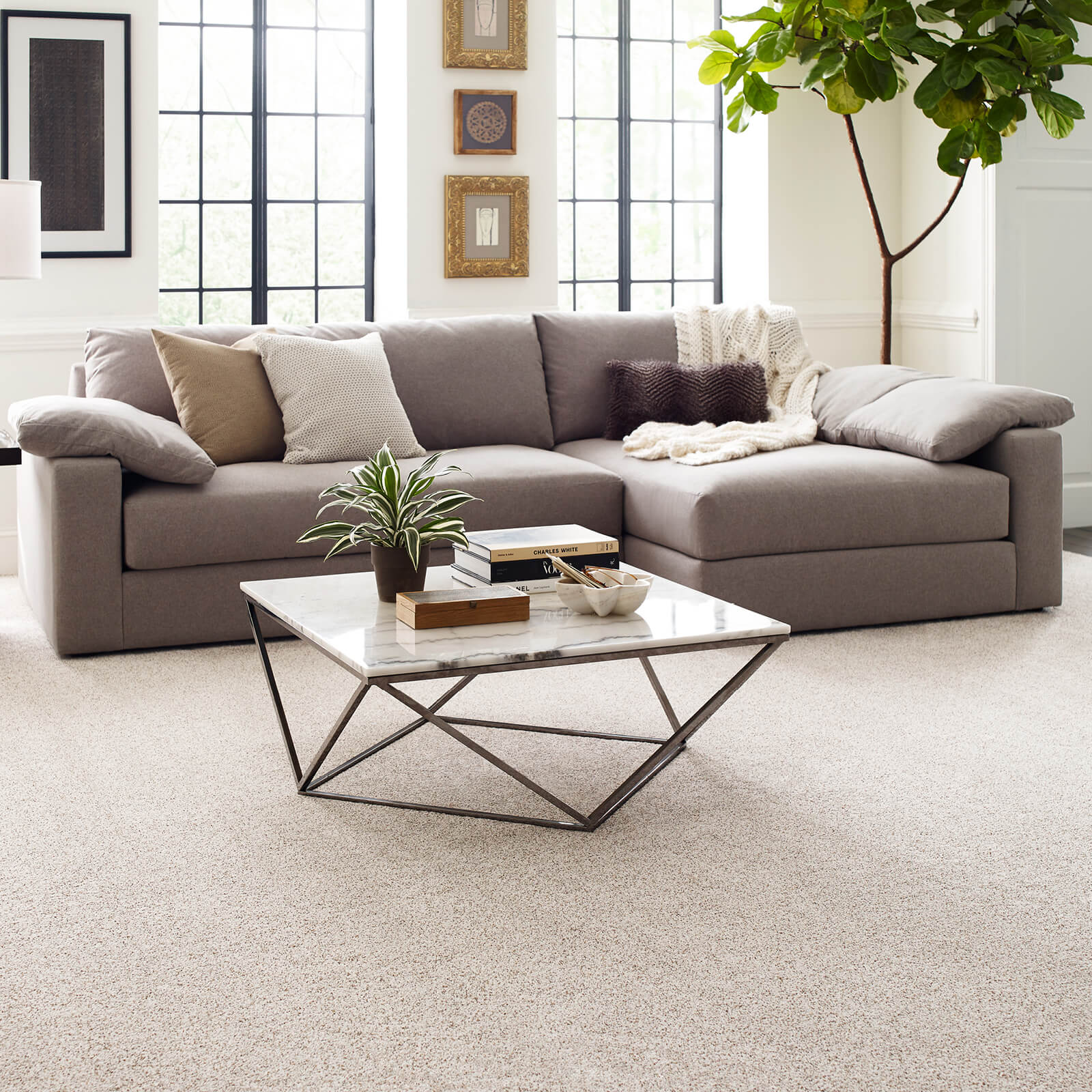Living room Carpet | We'll Floor You