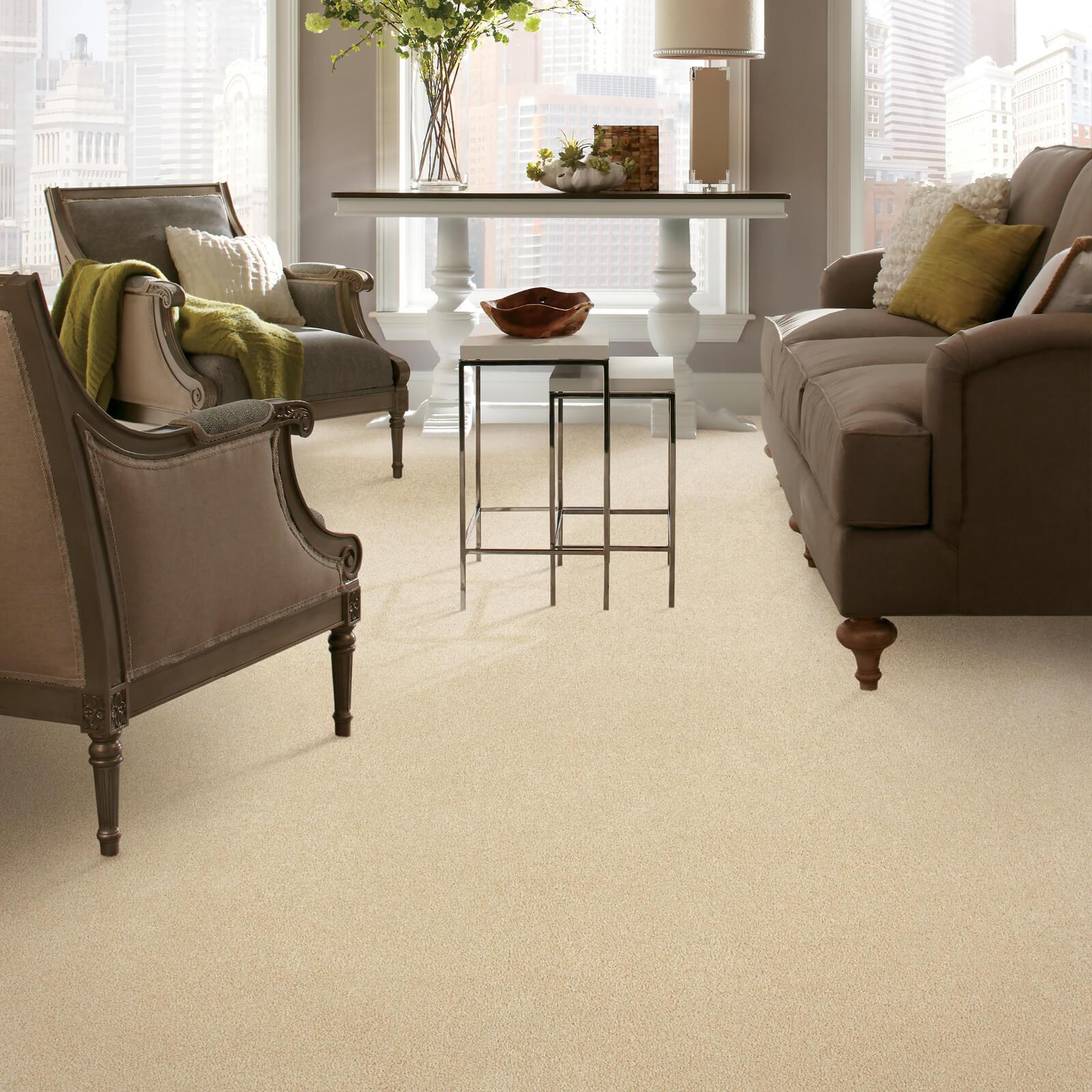 Sofaset on carpet   We'll Floor You
