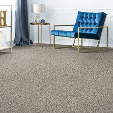 Grey carpet | We'll Floor You