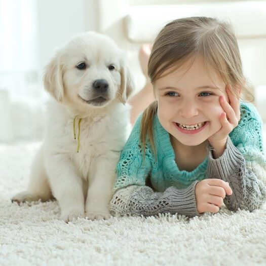 Baby with pet on carpet | We'll Floor You
